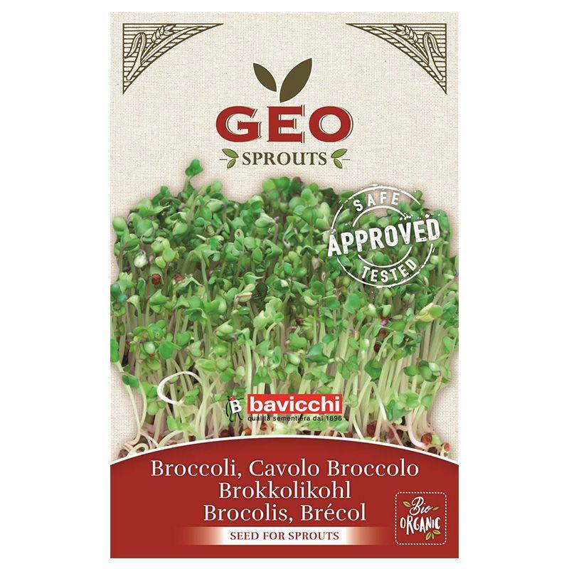 Broccolifrö GEO Sv EKO 13g